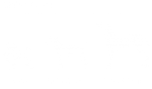 Sure-4-Pets-dog-sizing-01_l