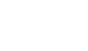 Sure-4-Pets-dog-sizing-04_m